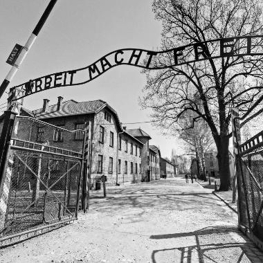 Obraz znaleziony dla: auschwitz wojna